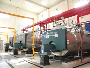 伊利乳业20吨WNS系列燃气蒸汽锅炉项目