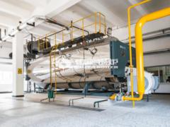10吨 WNS系列冷凝式燃气蒸汽锅炉项目(誉衡药业)