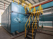25噸SZS冷凝式燃氣蒸汽鍋爐項目(焦作豫竹方便面廠)
