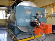 6吨WNS冷凝式燃气蒸汽锅炉项目(济仁药业)