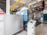 6噸WNS冷凝式燃氣蒸汽鍋爐項目(黑龍江建筑學院)