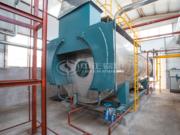 10噸WNS冷凝式燃氣蒸汽鍋爐項目(金紫陽食品)
