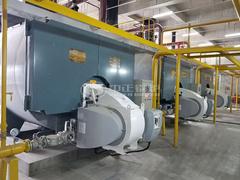 7MW WNS系列燃气热水锅炉项目(枫叶小镇)