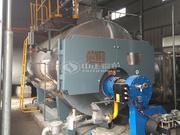 8噸WNS冷凝式燃氣蒸汽鍋爐項目(果果食品)