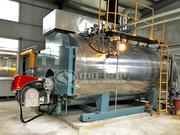 4噸WNS冷凝式燃氣蒸汽鍋爐項目(玉兔集團)