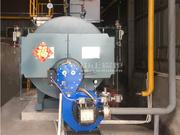 2噸WNS系列冷凝式燃氣蒸汽鍋爐項目(帥豐飼料)