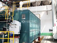 石家庄和谐纸业20吨SZS系列冷凝式燃气蒸汽锅炉项目
