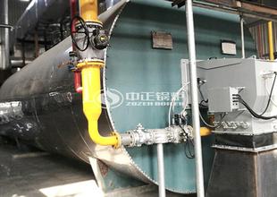 山東魯花1200萬大卡YQW系列燃氣臥式導熱油鍋爐項目