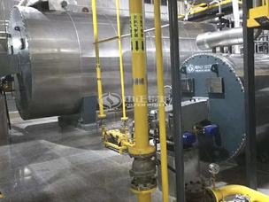 丹陽助劑化工廠500萬大卡YQW系列燃氣臥式導熱油鍋爐項目