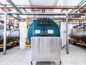 金新农饲料4吨WNS系列冷凝式乐虎游戏官网项目