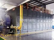 江西銅業40噸SZS系列冷凝式燃氣鍋爐項目