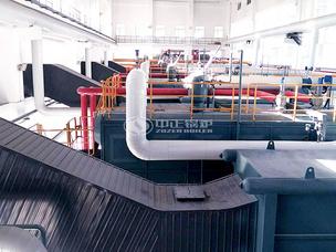 雙胞胎飼料1-12噸SZL系列燃煤、WNS系列燃氣鍋爐項目