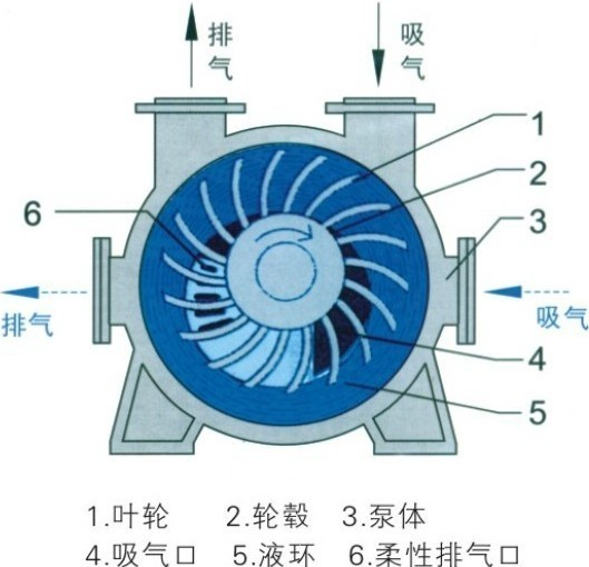 2BE型水环式真空泵结构图