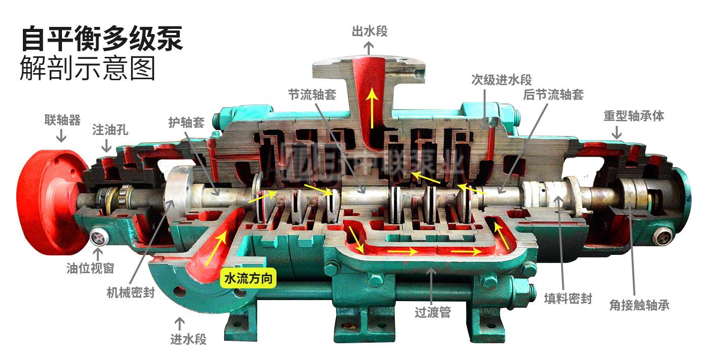 自平衡多级离心泵结构原理图