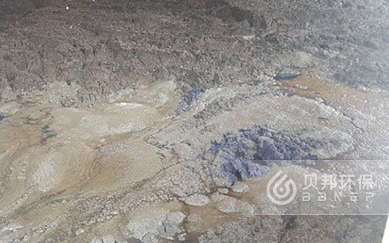 Sludge dewatering project of a printing and dyeing factory in Shandong