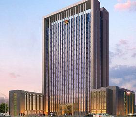 重庆市公安局818工程政务案例