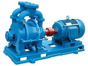 SK系列水環真空泵機組