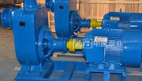河南中原大化集团采购2台套污水自吸泵