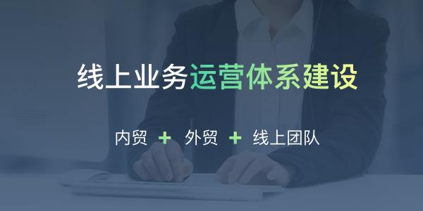 企業線上運營管理體系建設服務(套餐二)