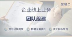 企业线上业务团队建设服务(套餐二)