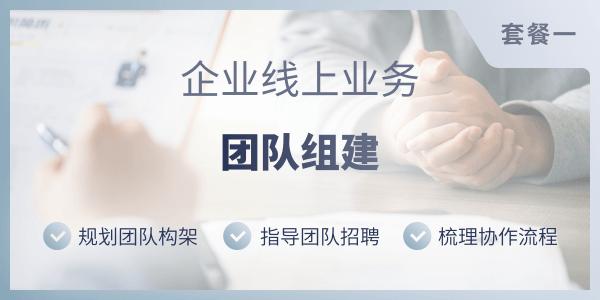企业线上业务团队建设服务(套餐一)