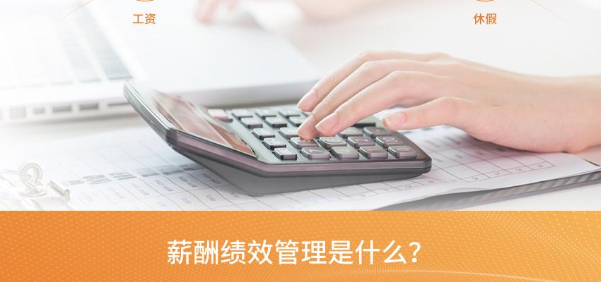 降本增效綜合管理咨詢-薪酬績效_02