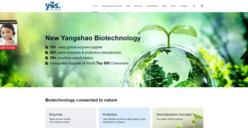 河南仰韶新生物科技全案定制悉知外贸网站
