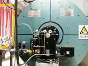 金芒果实业200万大卡导热油锅炉项目