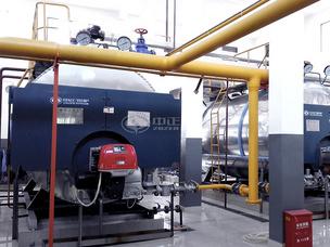 孙桥现代农业园区2.8MW WNS系列燃气热水锅炉项目