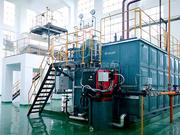 贵州烟叶12吨SZS系列冷凝式燃气蒸汽锅炉项目