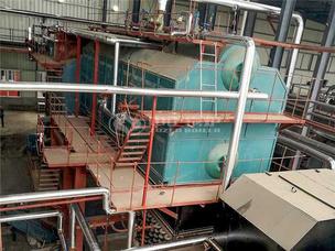 长白山制药10吨SZW系列生物质蒸汽锅炉项目