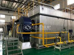 35吨SZS冷凝式燃气蒸汽锅炉项目(飞鹤乳业)