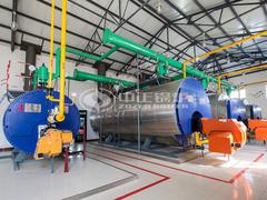 7MW WNS系列燃气热水锅炉项目(银浪牧场)