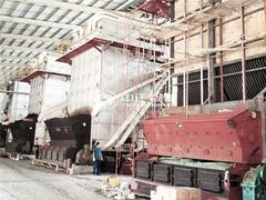 德利1600万大卡YLW系列导热油锅炉项目