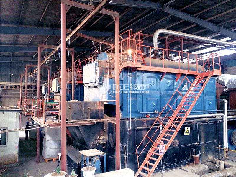 好成食品12吨DZL系列生物质蒸汽锅炉项目