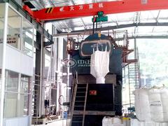 杭州云森纺织染8吨DZL系列生物质蒸汽锅炉项目