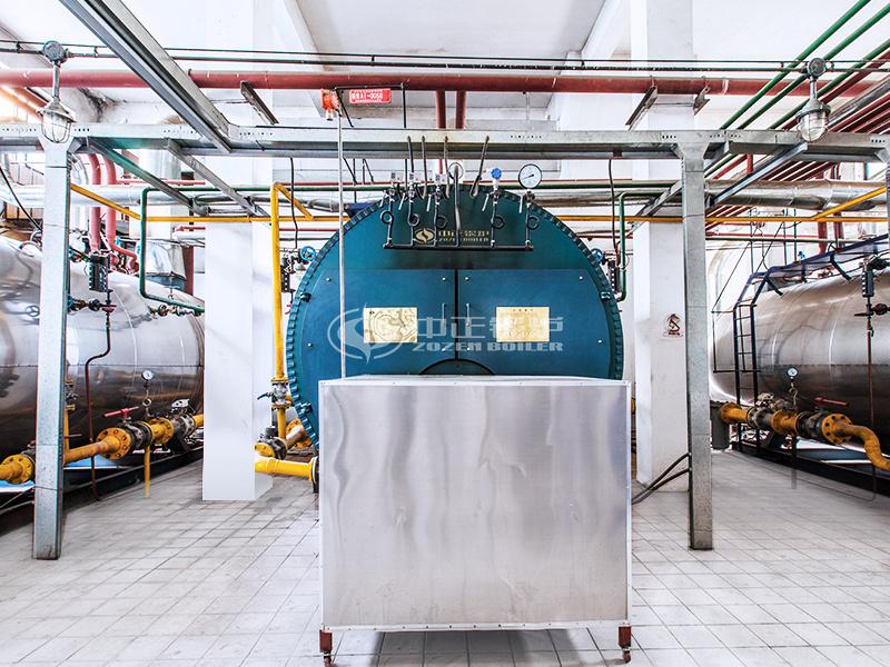 金新农饲料4吨WNS系列冷凝式燃气锅炉项目