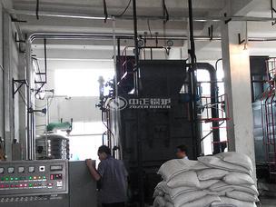 南京东润4吨DZL系列燃煤蒸汽锅炉项目