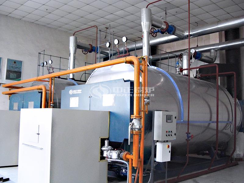 陕西好猫卷烟10吨WNS系列燃气蒸汽锅炉项目