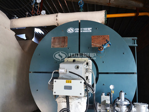 河南长领700万大卡YQW系列燃气卧式导热油锅炉项目