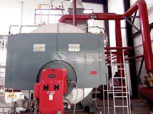 白象食品15吨WNS系列冷凝式燃气锅炉项目