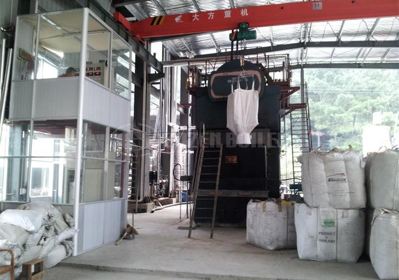 8 tph DZL biomass-fired steam boiler for textile factory