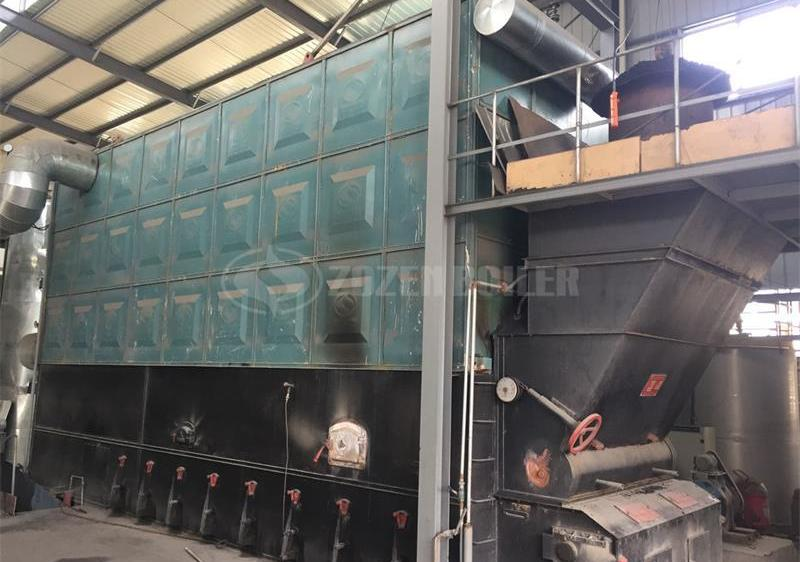 10 tph SZW biomass-fired steam boiler for pharmaceutical factory