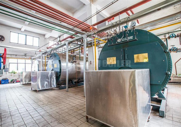 4 tph WNS condensing gas-fired boiler for feed industry
