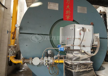 8.2 MW YY(Q)W thermal fluid for chemical factory