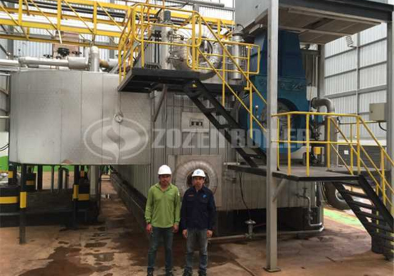 30 tph steam boiler for starch plant - Gas-fired boilers cases ...
