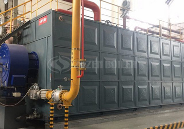 20 tph SZS condensing gas-fired steam boiler for paper industry