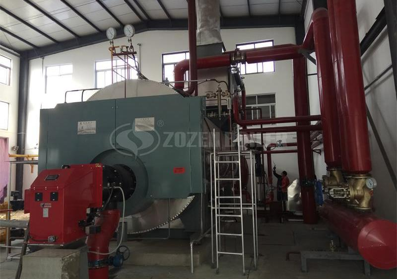 15 tph WNS condensing gas-fired boiler for food industry