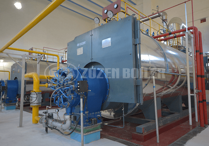 6 tph WNS condensing gas-fired boiler for wine industry