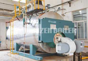 4 tph WNS condensing gas-fired boiler for winery